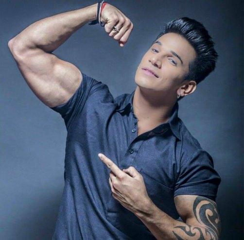 prince-narula-bigg-boss-9-contestant-biography