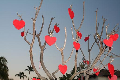 Valentine's-Day-Gifts