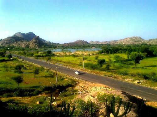 aravalli-hills-rajasthan-flora-fauna