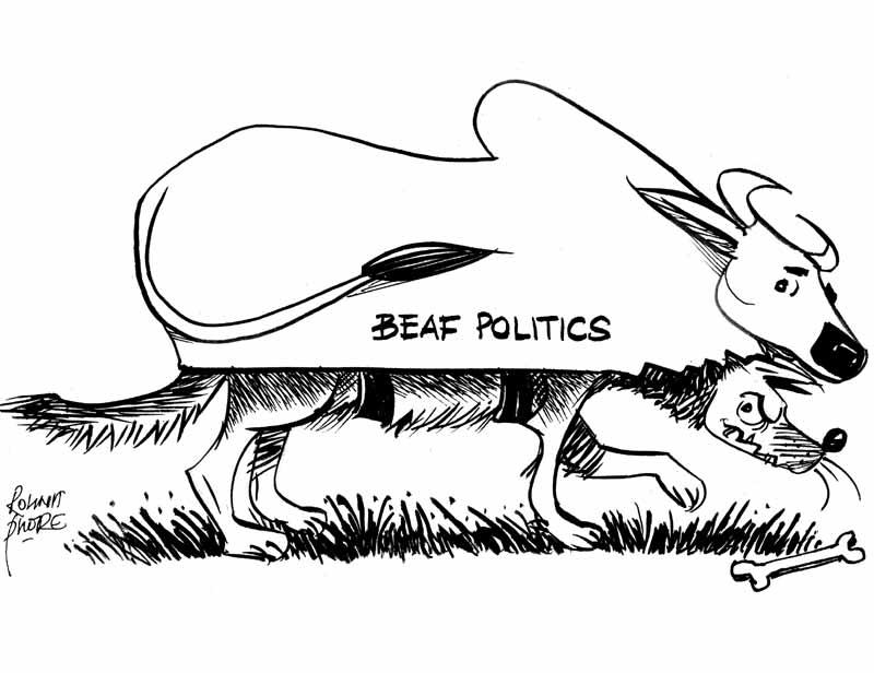 beef-politics