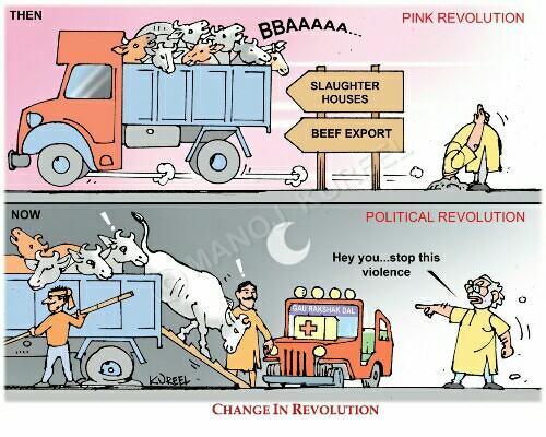 narendra-modi-pink-revolution-cow-politics