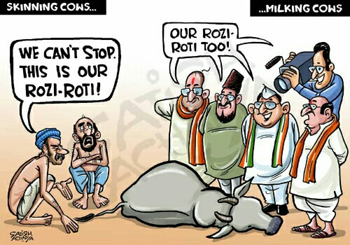 skinning-cows-dalits-muslims-cow-politics