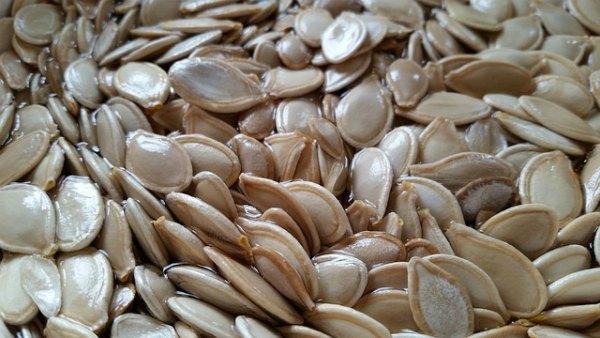 hybrid-seed-varieties-online