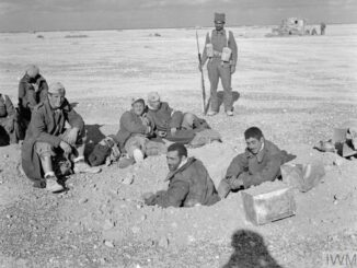 indian soldiers participation in world war II