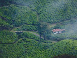 Munnar Tourist Spots in Kerala