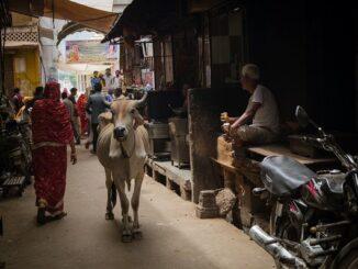 indian trafficked brides - representational image